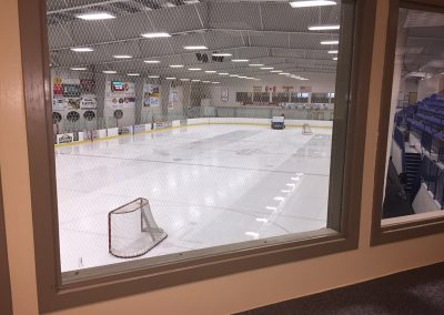 rink-view